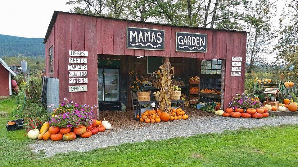 Mamas-Garden-Cover-Photo-1.jpg