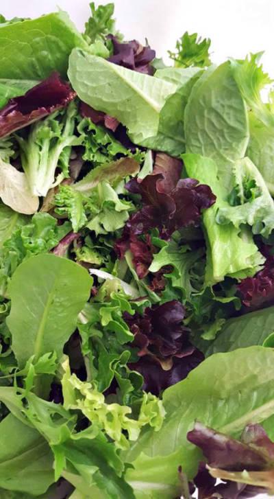 Salad Mix!