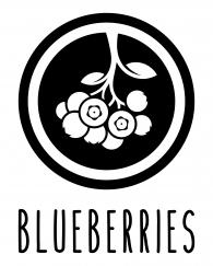 ICON-_-blueberries