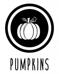 ICON-_-pumpkins